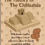 Chi History